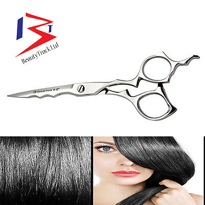 "Professional Hairdressing Barber Hair Cutting Razor Scissors Salon Shears 6"" Spa"
