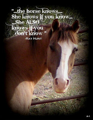 """Ray Hunt Quote Horse  refrigerator magnet  2  1/2 X 3 1/2  """""""