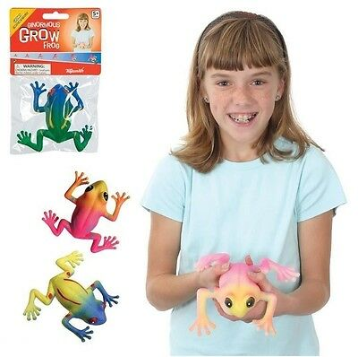 Ginormous Grow Frog Grows 3X Size Ages 5+ Science Experiment