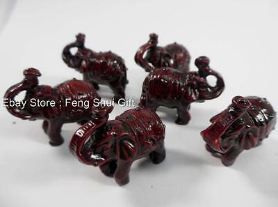 6x Lot Chinese Trunk Up Feng Shui Lucky Elephant Figurine Gift Set Wood Tone #S