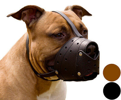 Pit Bull PitBull Terrier AmStaff Secure Basket Dog Muzzle Genuine Leather