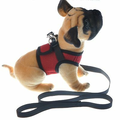 Dog Pet Cat Harness Vest Mesh S M L and Leash Red Collar Warm Jacket US