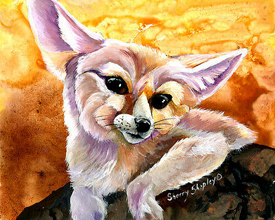 Fennec Fox Original 8x10 Art Painting by Sherry Shipley