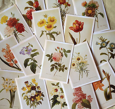 Lot of 16pcs Vintage Post card Postcard Postcards FLOWERS