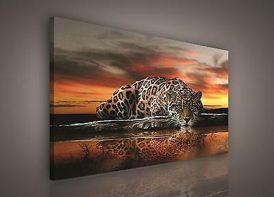 CANVAS PRINT PHOTO PICTURE (PP101O1) 100x75cm Leopard Animal Jungle Bedroom