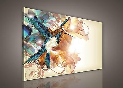 CANVAS PRINT PHOTO PICTURE (PP260O1) 100x75cm Hummingbird Art Abstract