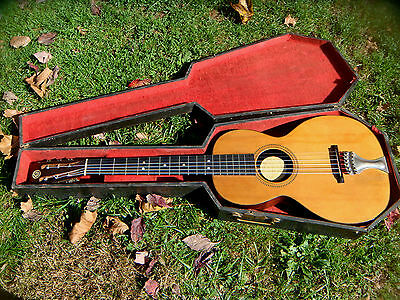AUGUST POLLMAN  PARLOR GUITAR, 1890'S, COFFIN CASE,  B. ROSEWOOD, VERY  NICE