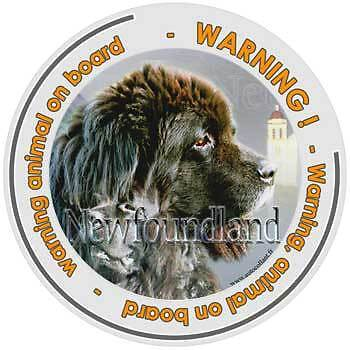 Circular Dogs sticker attention Newfoundland on board