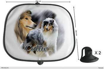 Rough Collie Dogs Sunshade