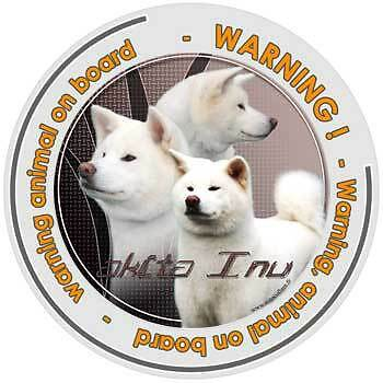 Circular Dogs sticker attention akita japonais on board
