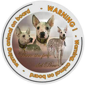 Circular Dogs sticker attention Hairless on board