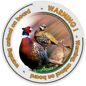 Circular Game sticker attention pheasant on board