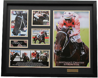 New Black Caviar Limited Edition Memorabilia