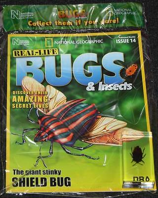 National Geographic Real Life Bugs & Insects Magazine Issue 14 Giant Shield Bug