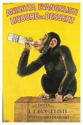 ANISETTA EVANGELISTI Poster - Monkey Drinking 24x36 Print ~ Retro Advertising