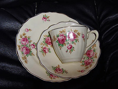 J&g Meakin Delicia  , Cup,saucer,butterplate.
