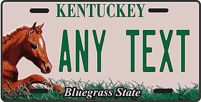 KENTUCKY HORSE LICENSE PLATE / ANY TEXT YOU WANT, state license plate, novelty