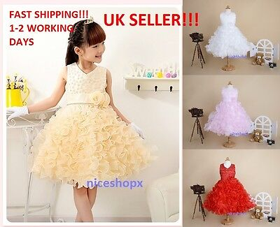Girls Flower/Bridesmaid/Party/Princess/Prom/Wedding/Christening/Communion Dress