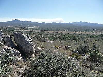 40 ac hunting area, start ranch