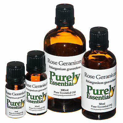 Rose Geranium Essential Oil Pure Natural For Aromatherapy 5ml 10ml 50ml 100ml
