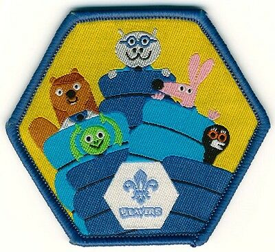 Beaver Sleepover Fun Badge Official Uniform New