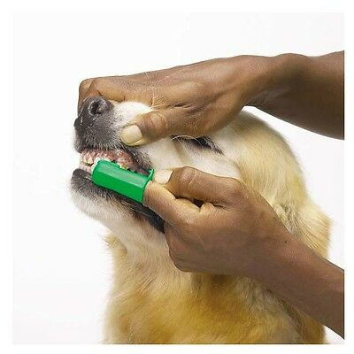 Green Finger Toothbrushes for Dogs & Cats Pet Oral & Dental Care Bulk Too !