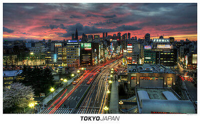 TOKYO JAPAN SKYLINE GLOSSY POSTER PICTURE PHOTO PRINT skytree tower view 3805