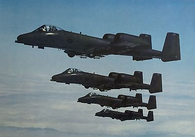 """Republic A-10 """"Warthogs"""" Stacked 16"""" x 20""""  Print"""