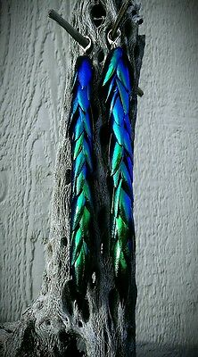 Hand Crafted Jewel Beetle Green/Blue Elytra Wing Dangle Earrings Size 5 copper