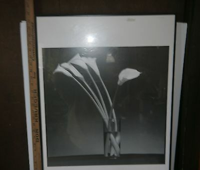 """Framed B&W Poster of Tall Flowers (Arum Lillies) in a Glass Vase 20"""" x 27"""""""
