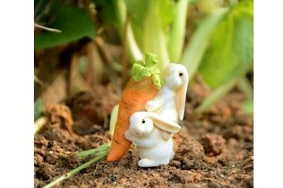 My Fairy Gardens Mini - Rabbits Carrying Carrot - Supplies Accessories