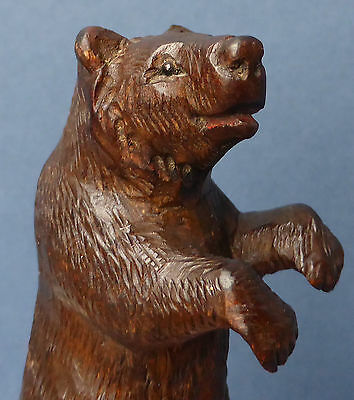 Lovely Antique Standing Black Forest Bear Carved Wood 1910 Very Detailed