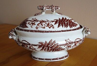 Brown & White Transferware Soup Tureen Covered Edinburgh Ironstone Free Shpping