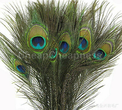 JBUS New 50pcs Natural Real Peacock Tail Eye Feathers for Decoration13 Inches