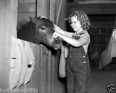 Shirley Temple candid petting a horse rare 8x10 photo