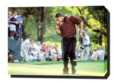 """TIGER WOODS CANVAS 30""""x20"""" ART PRINT POSTER PHOTO GOLF UNSIGNED"""