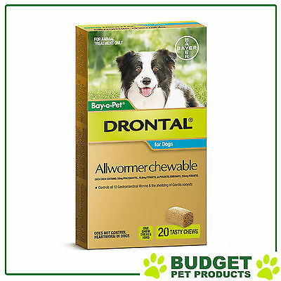 Drontal Allwormer For Dogs Medium 3-10kg 20 Chews
