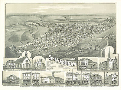 Antique Shenandoah Pennsylvania  Map 1889 Archival Quality Reproduction Print