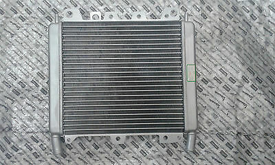 Piaggio Beverly 500 Cruiser  2007 - On Genuine Radiator 656528