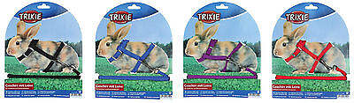 Nylon Rabbit Harness & Detachable Lead for Rabbits & Guinea Pigs in 4 Colours