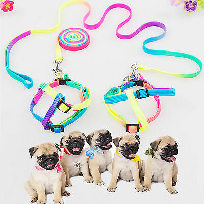 New Small Pet Dog Puppy Cat Rabbit Kitten Harness Nylon Collars and Leashes