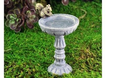 My Fairy Gardens Mini - Squirrel Birdbath - Supplies Accessories