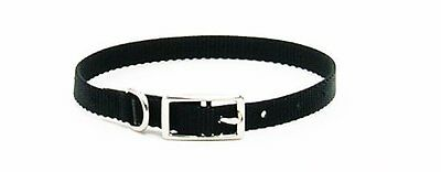 NEW Coastal Pet Products DCP40116BLK Nylon Dog Collar  5/8 by 16-Inch  Black