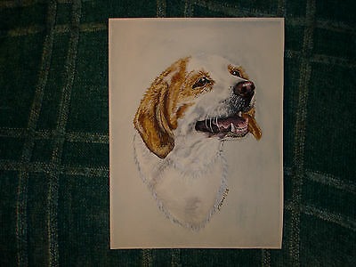 BEAUTIFUL ORIGINAL WATERCOLOR PAINTING OF A DOG /  SIGNED / K. POWELL