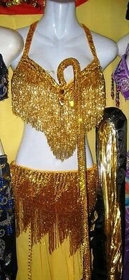 Belly Dance New Professional Costume Dress Bra + Belt + Skirt+Veil Made To Fit O
