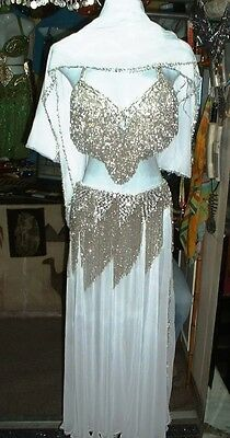 Belly Dance Professional Costume Dress New  Bra + Belt +Skirt+Veil Made To Fit I