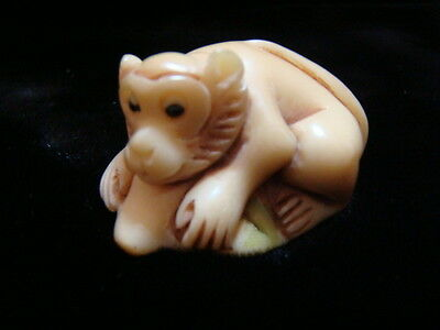 Unique Hand Carved Chinese  Year of the Monkey on Lotus Leaf Tagua Statue