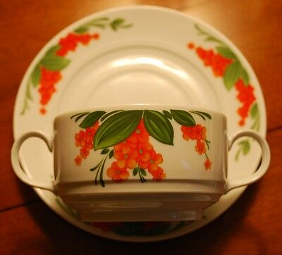 Orange Flowers Mittereich Bavaria 12 Pc Doubled Handled Soup Bowl W Salad Plate