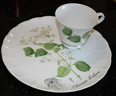 Vintage Brulante Clematite Snack Plates/w Cups. Fine China White/Green Floral