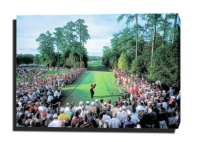 """TIGER WOODS CANVAS 30""""x20"""" ART PRINT POSTER PHOTO GOLF UNSIGNED THE MASTERS 18th"""